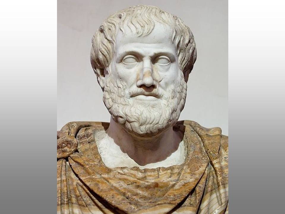 1. Theory. Fields: Philosophy of Knowledge (Epistemology), Philosophy of Science. Image: Aristotle, marble copy of bronze by Lysippos. Louvre Museum.