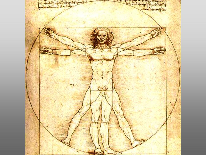 Human Thought and Art – The Vitruvian Man (Leonardo da Vinci, 1492).